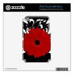 Margarita roja del Gerbera en negro iPod Touch 4G Skin