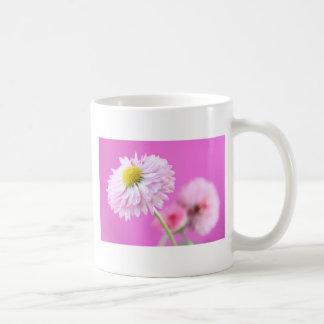 Margarita rosada adaptable - margarita inglesa taza