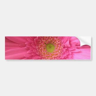 Margarita rosada de Gerber Etiqueta De Parachoque