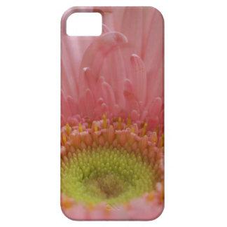 margarita rosada de Gerber del caso del iPhone 5 Funda Para iPhone SE/5/5s