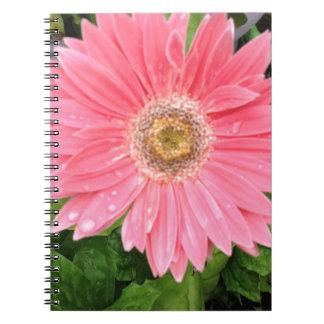 Margarita rosada de Gerber Libros De Apuntes