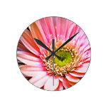 Margarita rosada del Gerbera Reloj