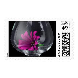 Margarita rosada en un sello de cristal