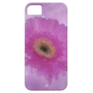 Margarita rosada y púrpura de Gerber iPhone 5 Fundas