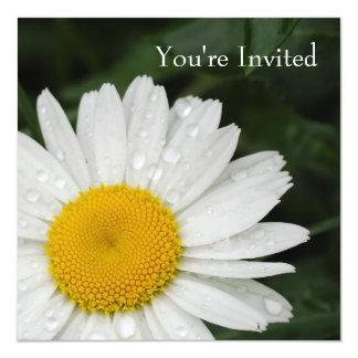 Margarita toda la invitación del acontecimiento de