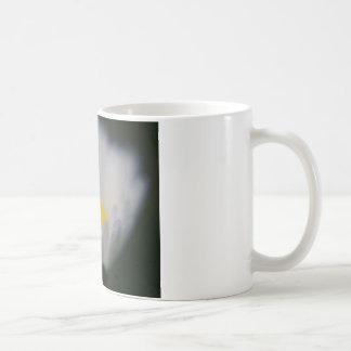 margarita translúcida taza de café