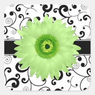 Margarita verde del Gerbera con el sello negro del Pegatinas Cuadradas