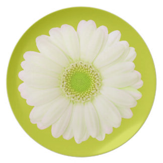 Margarita verde y blanca platos de comidas