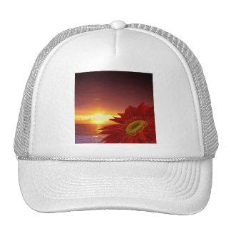 Margarita y puesta del sol de Gerber Gorras
