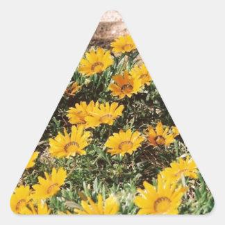 Margaritas amarillas del desierto calcomanías triangulos