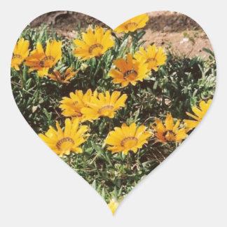 Margaritas amarillas del desierto pegatina de corazón personalizadas