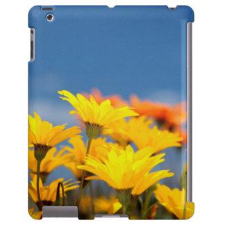 Margaritas anaranjadas y amarillas de Namaqualand Funda Para iPad