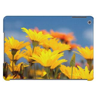Margaritas anaranjadas y amarillas de Namaqualand Funda Para iPad Air