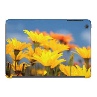 Margaritas anaranjadas y amarillas de Namaqualand Funda Para iPad Mini Retina