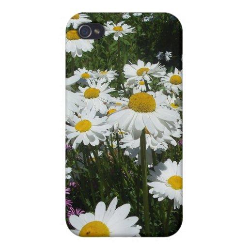 margaritas blancas de la caja de la mota del iPhon iPhone 4 Cárcasa