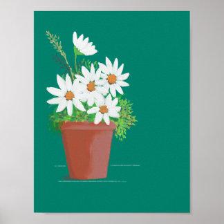 Margaritas blancas en la pintura de la acuarela de póster