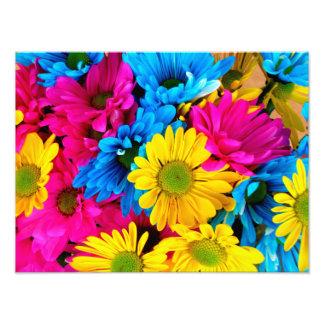 Margaritas coloridas brillantes fotografía