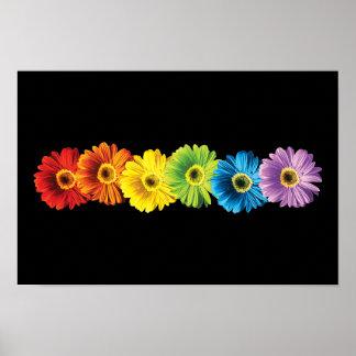 Margaritas del arco iris póster