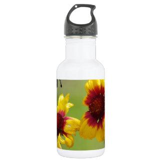 Margaritas del Mt. Shasta y abeja de Nonzomb