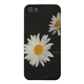 Margaritas iPhone 5 Carcasas