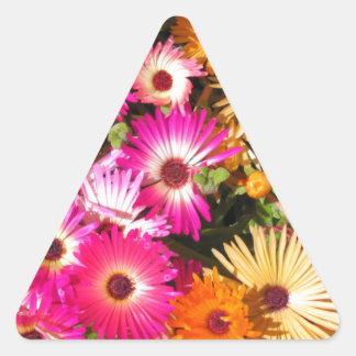 Margaritas Pegatina Triangular