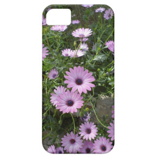 Margaritas púrpuras iPhone 5 carcasas