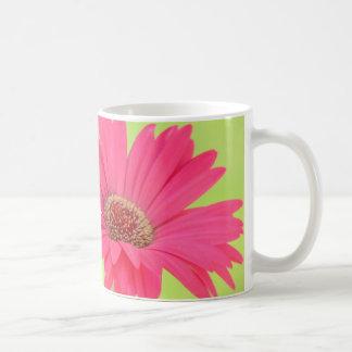 Margaritas rosadas adaptables de Gerber en la taza