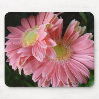 Margaritas rosadas amelocotonadas Mousepad Alfombrillas De Raton