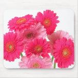 Margaritas rosadas brillantes del Gerbera Alfombrilla De Raton