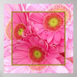Margaritas rosadas de Gerber Póster