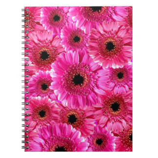 Margaritas rosadas del Gerbera Libros De Apuntes