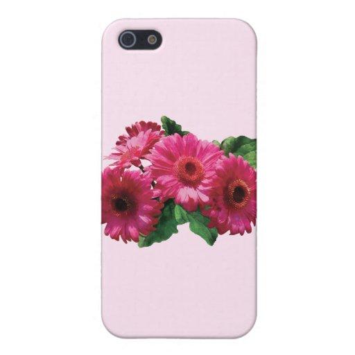 Margaritas rosadas oscuras del Gerbera iPhone 5 Coberturas
