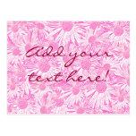 Margaritas rosadas tarjetas postales