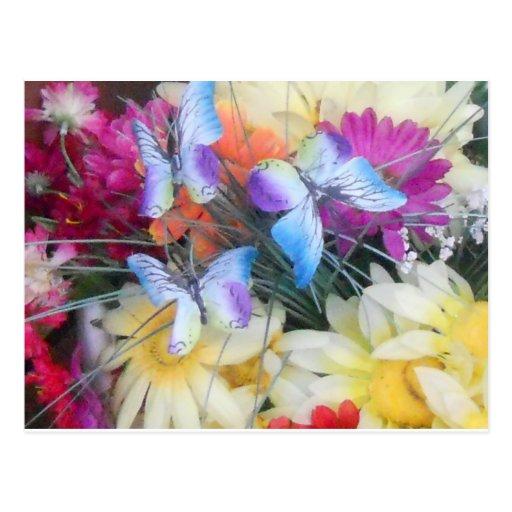 Margaritas y mariposas tarjeta postal