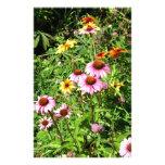 Margaritas y Wildflowers rosados Papelería De Diseño