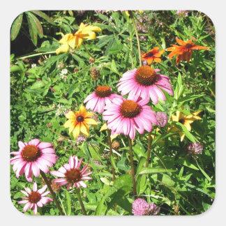 Margaritas y Wildflowers rosados Calcomania Cuadradas Personalizadas