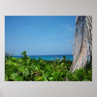Margaritaville on DelRay Beach poster