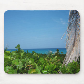 Margarittaville on DelRay Beach in Florida Mouse Pad