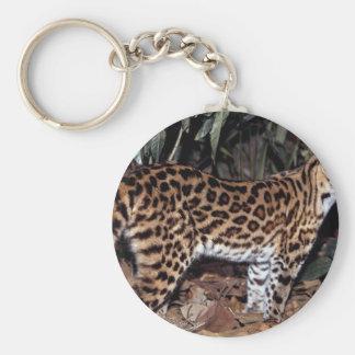 Margay (Felis wiedi) Keychain