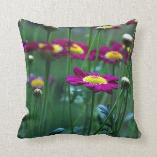 Marguerite Daisy Pillow