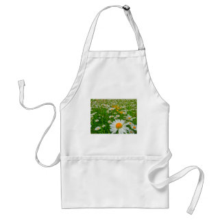 marguerite field in spring adult apron