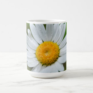 Marguerite-wild-flower426 WILDFLOWERS DAISY  SPRIN Classic White Coffee Mug