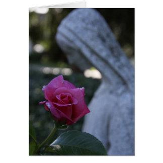 Maria bendecida y el color de rosa tarjeta pequeña