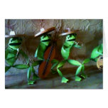 MARIACHI FROG GROUP BIRTHDAY CARD