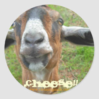 "Mariah the Goat,  ""ChEeSe!!!"" sticker"