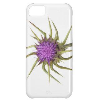 Marian thistle 2 iPhone 5C cases
