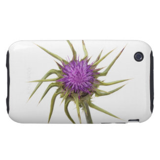 Marian thistle 2 tough iPhone 3 covers