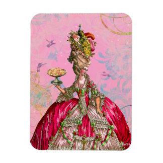Marie Antoinette & Hummingbirds in Pink Rectangular Photo Magnet