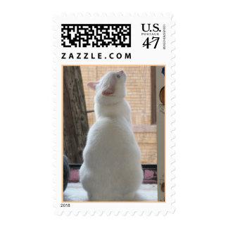 Marie Celeste Seeks Stamp