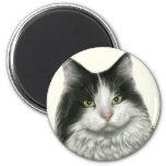 Marie, gato negro y blanco de pelo largo imán de frigorifico